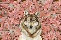 ik_wolf_leaves_pd