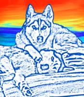 Expressive Huskies Mixed Media C51816