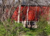 Red barn being reclaimed