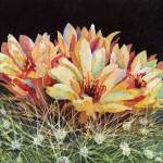 """""""Full Bloom"""" by HaileyWatermedia"""