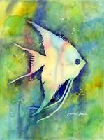 Angel Fish I