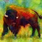 """American Buffalo"" by HaileyWatermedia"
