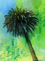 ORL-2043-1 Palm tree tropical