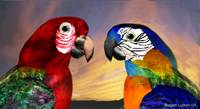 HYPER PARROTS / RED AND BLUE ARA
