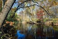 Lamington River Fall Scenic, Tewksbury, Hunterdon