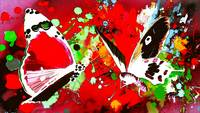 Abstract Butterfly Art 23