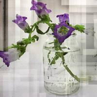 ORL-4039-2 Clear Mason Jar with Flowers.