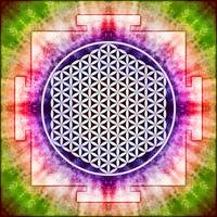 Flower Of Live - Artwork Yantra