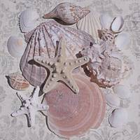 ORL-5224-3 STARFISH SEA SHELL BEACH DECOR