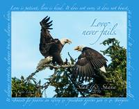 Loving Eagles