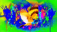 Abstract Bird Art 24