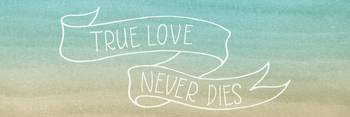 True Love Panoramic Sentiment