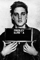 Elvis Presley Mug Shot Vertical 1
