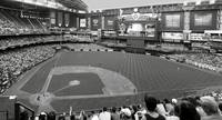 Chase Field 2015 BW