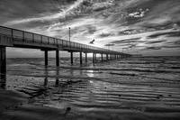 Texas Coastal Fishing Pier BW