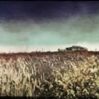 on the prairie Art Prints & Posters by F. J. Sochacki Jr