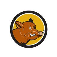 Wild Boar Razorback Head Startled Circle Cartoon