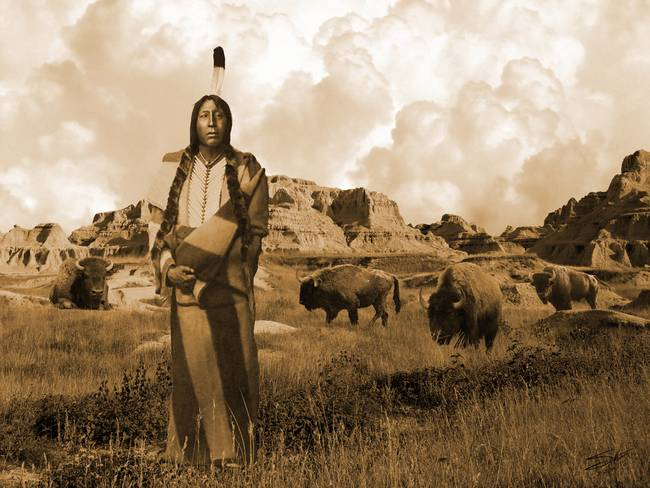 Standing with the Buffalo