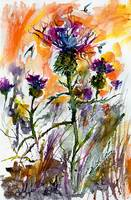 Thistles Flowers Watercolor