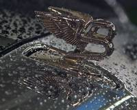 Bentley Mulsanne after rain 2