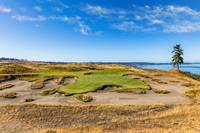 Chambers Bay Golf Course, Hole #15