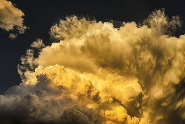 Golden Thunderhead