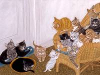 Kitty Litter 2