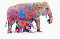 olephant backgroud removed final