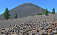 Cones below Cinder Cone