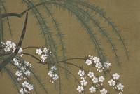 Kamisaka Sekka, Flowers of a Hundred Generations