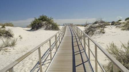 White Sands Dune Path 2