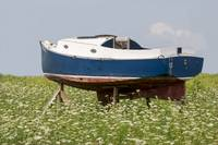 Old Boat in a Field