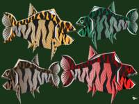 Tigerfishes