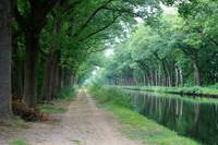 Along a Belgian Canal by Carol Groenen