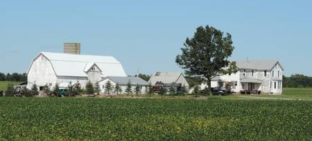 Z - Farmstead with Soybean Crop Panorama - 4060