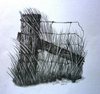 Old Farm Fence Pencil Drawing