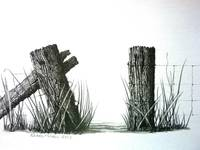 Farm Fence Gateway Pencil Drawing