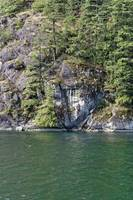 2016 Indian Arm Cruise 10 by Priscilla Turner