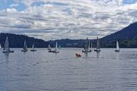 2016 Indian Arm Cruise 2 by Priscilla Turner