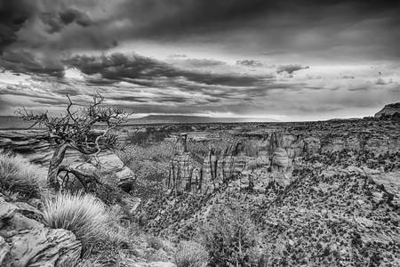 Colorado National Monument in Black and White