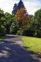 Stanley Park Vancouver Sept 2011 15 by Priscilla Turner