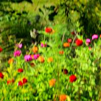 Summer Motion by Karen Adams