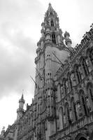 Brussels Town Hall - Black and White by Carol Groenen