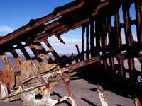 Shipwreck of the Peter Iredale 076