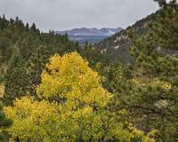 Continental Divide Autumn View