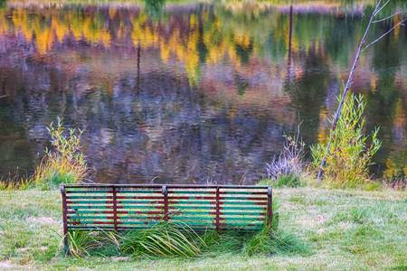 Bench For Day Dreaming