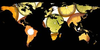 World Map Silhouette - Citrus Fruits