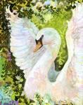 Swan by Jennifer Lommers