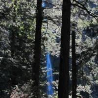 Multnomah Falls 259 by Richard Thomas