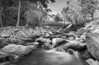 Mountain Creek Bridge in Black and White